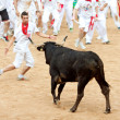 Stock Photo: PAMPLONA, SPAIN - JULY 10: People having fun with young bulls at