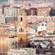 Cathedral Malaga, Malaga Province, Costa Del Sol, Spain — Stock Photo