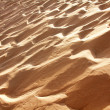 Sand dunes Bolonia — Stock Photo