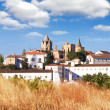 Catedral Evora, Portugal — Stock Photo