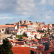 View of old town of Porto, Portugal — Stock Photo #36489879