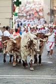 PAMPLONA, SPAIN-JULY 9: People run from the bulls on the street — Stock Photo