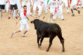 PAMPLONA, SPAIN - JULY 10: People having fun with young bulls at — Stock Photo