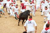 PAMPLONA, SPAIN - JULY 10: People having fun with young bulls at — Stok fotoğraf