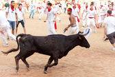 PAMPLONA, SPAIN - JULY 11: People having fun with young bulls at — Stock Photo