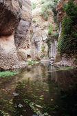 Mountain gorge in Ronda, Malaga Province, Andalusia, Spine — Foto de Stock