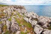 Coastal cliffs near beach Gulpiyuri, Asturias, Spain — Foto de Stock