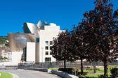 BILBAO, SPAIN - AUGUST 9: Exterior view of the Guggenheim Museum — Stock Photo