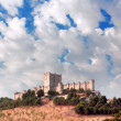 Castle of Penafiel, Valladolid, Spain — Stock Photo #36509113