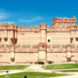 View of Coca Castle, province of Segovia, central Spain — Stock Photo