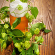 Pint and hop plant — Stock Photo