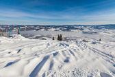 Carpathian mountains — ストック写真