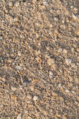 Texture of a sand and soil — Stock Photo