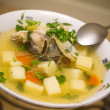 Stock Photo: Russifish soup