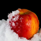 Roter apfel im schnee — Stockfoto
