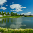 Beautiful pond in expensive neighborhood — Foto Stock
