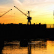 Silhouettes of portal cranes — Stock Photo #9428856