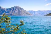 Kotor bay in Montenegro, Europe — Stock Photo