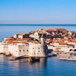 Dubrovnik, UNESCO world heritage site — Photo