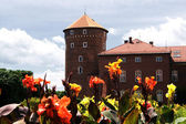 Krakow, Poland - July 14: one of the towers of the ancient Wawel — Stock Photo