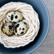 Three quail eggs in the nest with the thread on the gray plate - Stock Photo