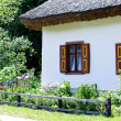 An old Ukrainian rural hut and flowerbed — Stockfoto