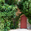 The little red door and a lot of green plants — Stock Photo