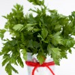 The fragrant leaves of parsley is a small iron bucket — Stock Photo