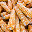 Royalty-Free Stock Photo: Yellow dried corn