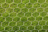 Back side the Goal football — Stock Photo