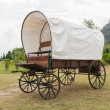 Covered wagon — Stock fotografie #27139029