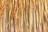 Texture of straw — Stock Photo
