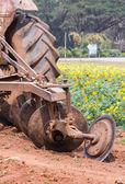 Tractor in flower garden — Stock Photo