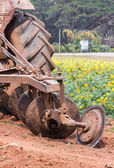 Tractor in flower garden — Стоковое фото