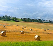 Illustration of a summertime field with rolls of hay — Stock Photo