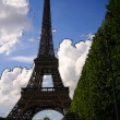 Eiffel Tower in Paris (France) - Stock Photo