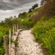 Ancient Roman road — Stock Photo