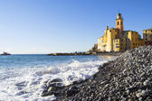 Basilica of Santa Maria Assunta, Camogli, — Stock Photo