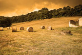Bale of hay in a cultivated field at sunset — Stockfoto