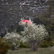 Red glider flyout in valley, France — 图库视频影像