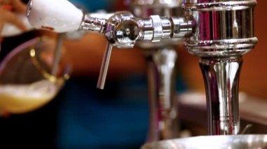 Nalijte pivo v baru — Stock video