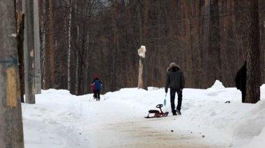Caminar en el parque de invierno — Vídeo de Stock