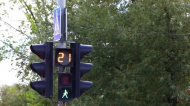Traffic light on the post with sign — Stock Video