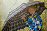 Pretty little boy posing under umbrella, close-up — Stock Photo