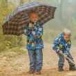 Two young brothers playing in autumn park — Stock Photo