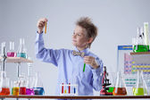 Smart school boy looks at reagents in test tubes — Stock Photo