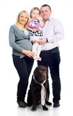 Familie met retriver — Stockfoto