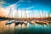 Yachts at sunset — Stock Photo