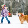 Little girl with dog — Stock Photo #43824085