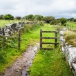 Footpath leading through a gate across Bodmin Moor — Stock Photo